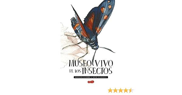 Museo vivo de los insectos: 17 (HARPERKIDS): Amazon.es ...