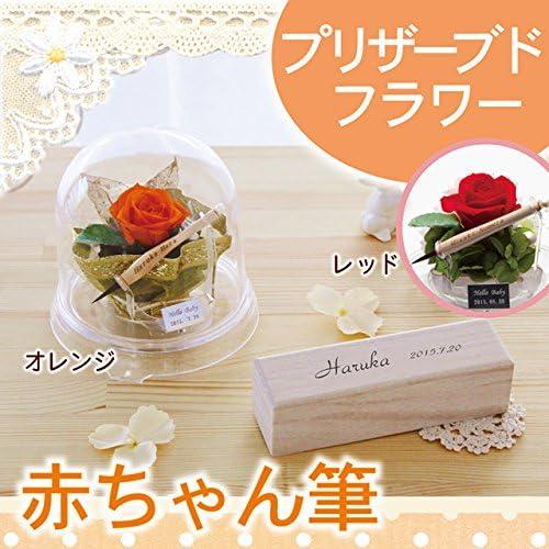 【日本製(広島県)】赤ちゃん筆 fairy flower お花のドーム (赤)