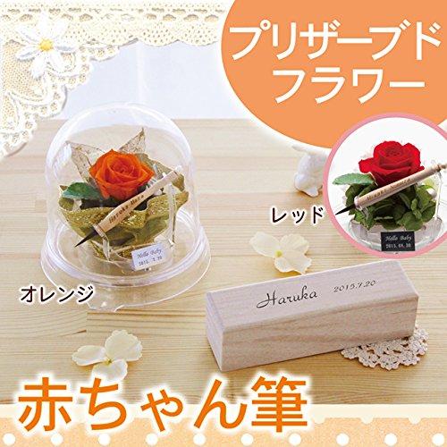 【日本製(広島県)】赤ちゃん筆 fairy flower お花のドーム (赤)   B075RSHP6N