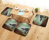 Leighhome Modern Chair Cushions Scene Accessories College List One of a Kind Machine Washable Silky Satin in Convenient Safety and Hygiene W23.5 x L23.5/4PCS Set