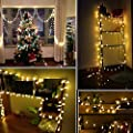 Twinkle Star 100 LED Star String Lights