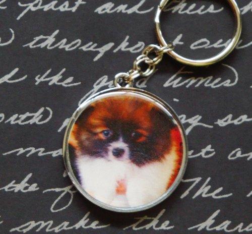Photo Swarovski Rhinestone Keychain **YOU CHOOSE THE ()