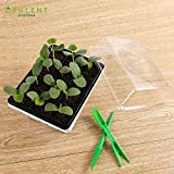 10-Pack Seed Trays 120 Cells Seedling Starter Tray, OPULENT SYSTEMS Garden Plants Germination Kit Seed Starting Tray with Humidity Adjustable Dome and Base for Hydroponic Seed Growing Starting