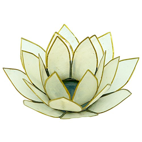 Capiz Tea Light Holder - Lotus 21 Capiz Natural