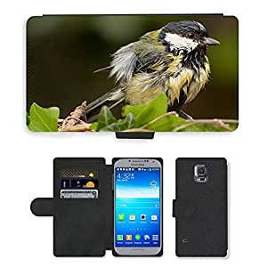 PU LEATHER case coque housse smartphone Flip bag Cover protection // M00130769 Forraje Tit Pájaro Pequeño joven // Samsung Galaxy S5 S V SV i9600 (Not Fits S5 ACTIVE)
