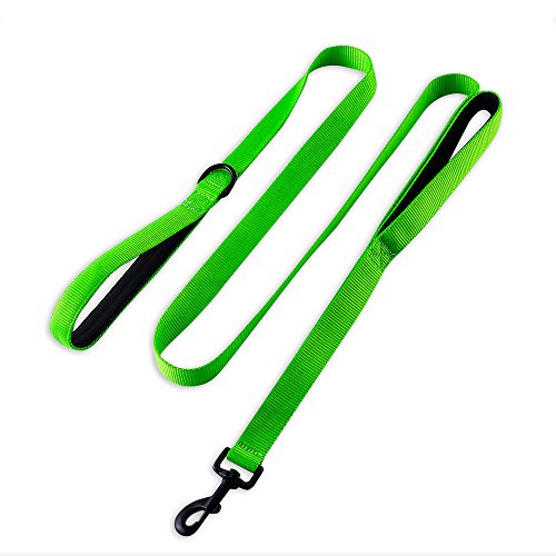 Clean Eco Green (Eco-clean Heavy Duty Dog Leash, 2 Padded Handles, 6 FT Long with Fluorescent Green, Perfect for Medium to Large Dogs)