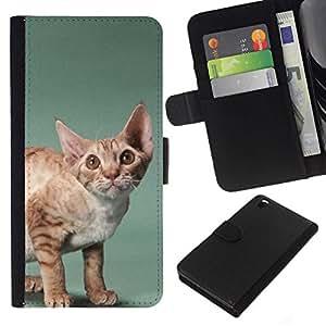 All Phone Most Case / Oferta Especial Cáscara Funda de cuero Monedero Cubierta de proteccion Caso / Wallet Case for HTC DESIRE 816 // Javanese Devon Rex Big Ears Cat