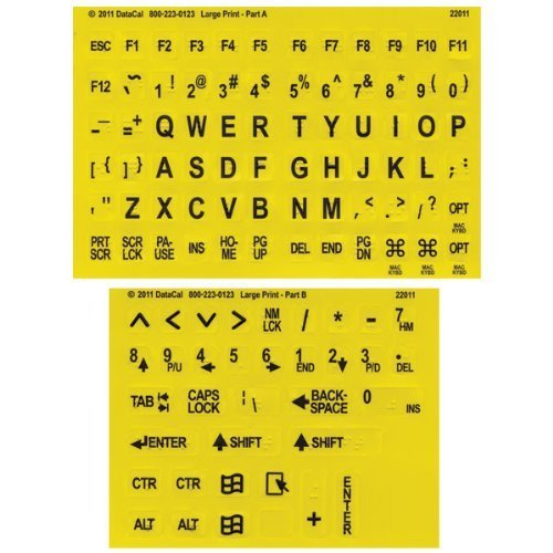 Black on Yellow Braille-Large Print Letters by AramediA