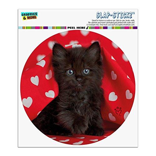 Graphics and More Black Ragdoll Tiffany Cat Kitten Hearts Love Automotive Car Window Locker Circle Bumper Sticker ()