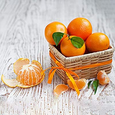 Gilroy 50Pcs Orange Tree Seeds Potted Fruit Plant for Home/Garden/Outdoor/Yard/Farm Planting : Garden & Outdoor