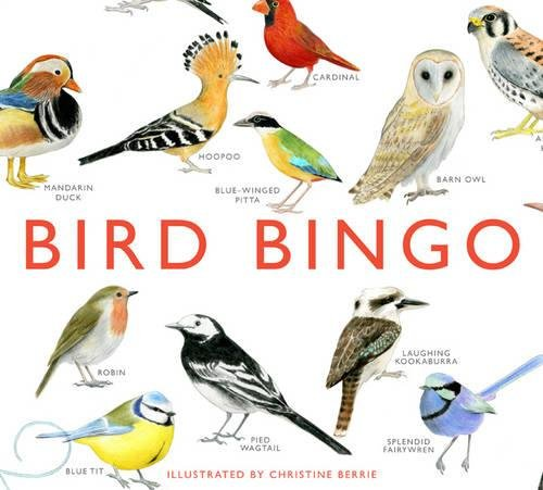 How To Play Go Fish Card Game - Bird Bingo