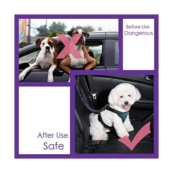 SlowTon Dog Seatbelt, 2 Pack Pet Car Seatbelt Headrest Restraint Puppy Safety Adjustable Seat Belt with Elastic Bungee and Reflective Stripe Connect with Dog Car Harness 6