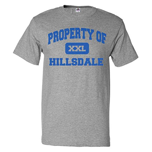 ShirtScope Property of Hillsdale IL T shirt Funny Tee - Hillsdale Shops