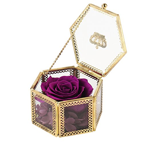 Mothers Day Gifts,Preserved Flower Rose,Never Withered Roses,Upscale Immortal Flowers,Gifts For Women,Her,Girls,Sister, Mother's Day,Valentine's Day,Anniversary,Birthday,Wedding (X Purple Rose)