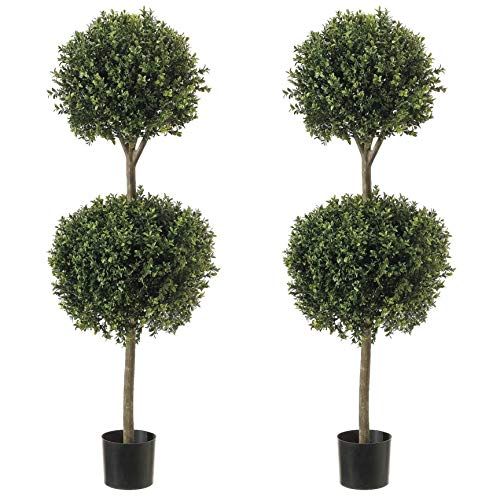 Tall Topiary (Northwood Calliger 4.6' (56