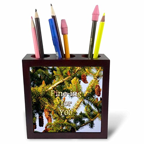 3dRose Jos Fauxtographee- Pine Tree - Pining for you written over a Pine Tree in PV UT - 5 inch tile pen holder (ph_255943_1)