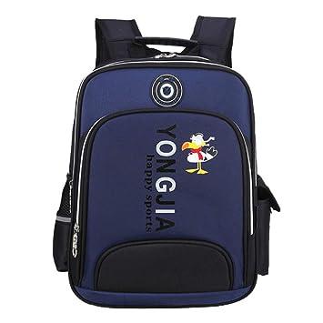 Bolso Mochila Mochilas Escolares Deporte Mochila Colegio Backpack Grande Mochila Infantil Juveniles,Azul Grande: Amazon.es: Equipaje