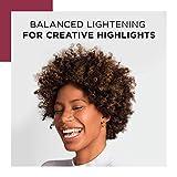 Clairol Professional Hair Lightening & Lighteners