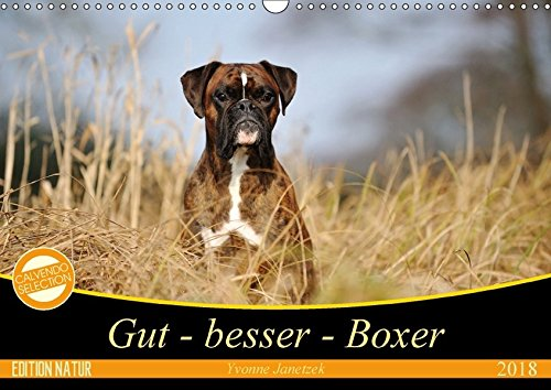 Gut - besser - Boxer (Wandkalender 2018 DIN A3 quer): Boxer, einzigartige Hunde (Monatskalender, 14 Seiten ) (CALVENDO Tiere) [Kalender] [Apr 13, 2017] Janetzek, Yvonne