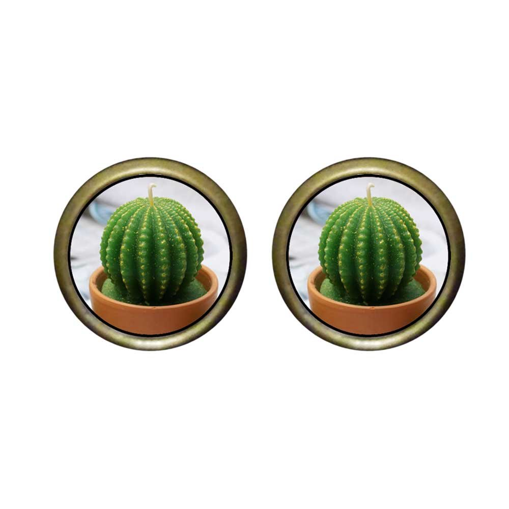 GiftJewelryShop Bronze Retro Style Cute Cactus Photo Stud Earrings 12mm Diameter