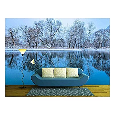 Beautiful Handicraft, That's 100% USA Made, Landscape is Not Still Pond with Snowy Shore