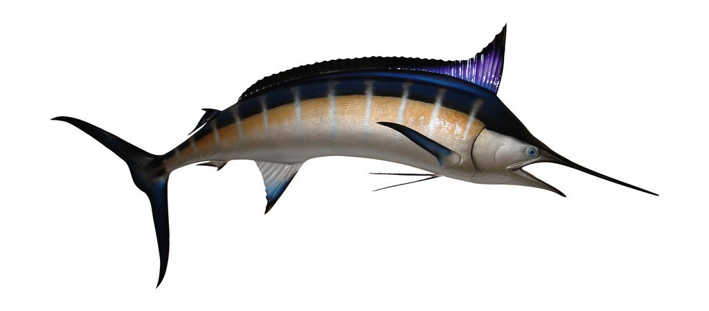 120'' Blue Marlin Half Sided Fish Mount Replica, Affordable Coastal Decor - Indoors Or Outside