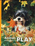 Animals at Play, U. S. National Geographic Society Staff, 0870447394
