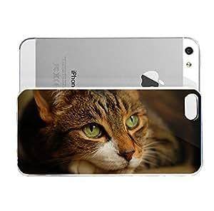 iPhone 5&5S cover case Animals Cat