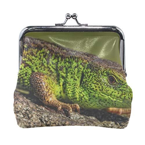 - Rh Studio Coin Purse Reptile Look Lizard Color Print Wallet Exquisite Clasp Coin Purse Girls Women Clutch Handbag