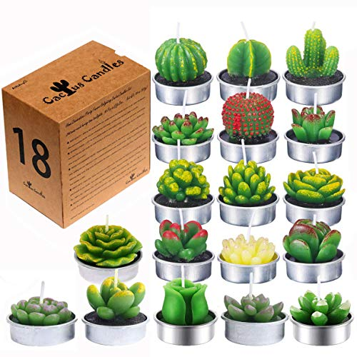 AiXiAng Delicate Succulent Tealights Cactus Candles Tealights for Home Decor (18 Pcs,Gift Boxed) ()