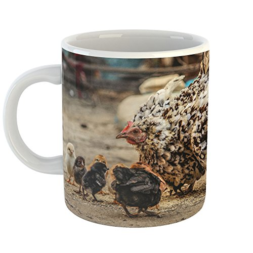 Westlake Art - Chicken Galliformes - 11oz Coffee Cup Mug - Modern Picture Photography Artwork Home Office Birthday Gift - 11 Ounce (04C4-790AF)