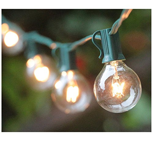 G40 Globe String Lights with 25 Clear Bulbs, UL List for indoor Outdoor Commercial Use, Vintage Backyard Patio Lights, Outdoor String Lights for Garden Pergola Decks Cafe Market Hanging Lights, Green (Lights Wedding Hanging)