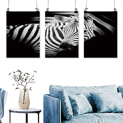 SCOCICI1588 3-Piece Modern Portrait Baby Zebra to Hang for Living Room No Frame 12 INCH X 12 INCH X 3PCS