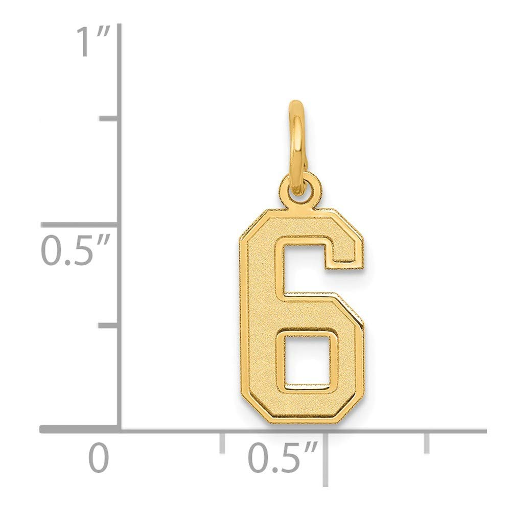 14K Small Satin Number 6 Charm