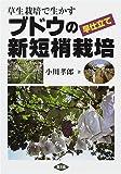 草生栽培で生かすブドウの早仕立て新短梢栽培