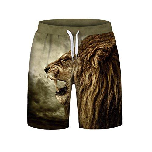 iZHH Men's Summer Casual Plus Size 3D Printed Beach Shorts Pants(Black,28) (Directoire 3 Light)