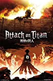""": Trends International Attack on Titan Fire Wall Poster 22.375"""" x 34"""""""