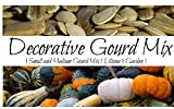 Gourd Seeds - Decorative Mix - Small and Medium Varieties - Booklet Included - Liliana's Garden