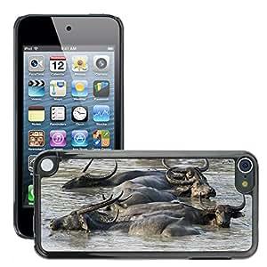 Etui Housse Coque de Protection Cover Rigide pour // M00109922 Buffalo salvaje asiático barro Animal // Apple ipod Touch 5 5G 5th