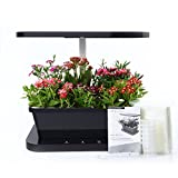 BLOOMWIN Indoor Herb Vegetable Growing Kit 14''x10''x14'' Year Round Salad Gardening 6 Pod Mini Farm with Full Spectrum LED Light Watering System, Black