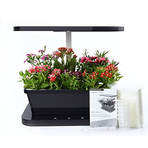 BLOOMWIN Indoor Herb Vegetable Growing Kit 14''x10''x14'' Year Round Salad Gardening 6 Pod Mini Farm with Full Spectrum LED Light Watering System, Black by Bloomwin