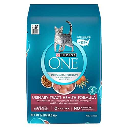 Purina ONE Urinary Tract Health Formula Adult Dry Cat Food -
