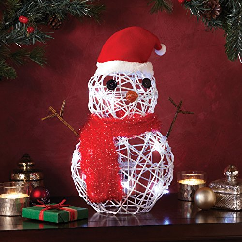 Snowman LED Light White Cordless Battery Christmas Decoration Winter (Apothecary Foyer Light)