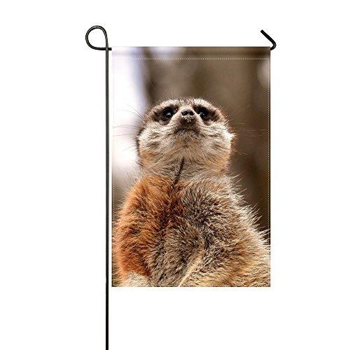 Standing Meerkat - RH Studio Garden Flag Meerkat Funny Standing 12x18 Inches(without Flagpole)