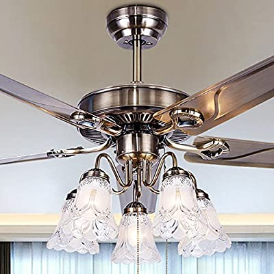 Akronfire Household Celing Fans Living Room Remoto Control Simple Modern Iron Leaf Fan Lighting (48-Inch)