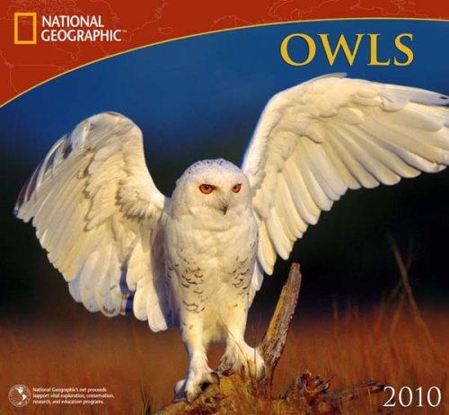 Owls National Geographic 2010 Wall Calendar