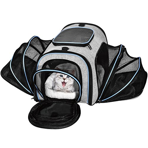 Huanxu Pet Carrier Airline Approved Expandable Soft Sided 4 Sides Travel Bag for Dogs Cats Kittens Puppies & Small and Medium Animals Carriers