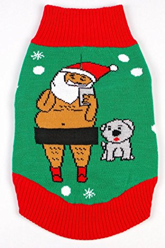 Your Busted Costume (Funky Tails Dog Ugly Christmas Sweater Santa Selfie Green (XXL))
