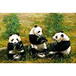 The Perfect Effect Canvas Of Oil Painting 'Pandas Eating Bamboos' ,size: 8x12 Inch / 20x31 Cm ,this High Quality Art Decorative Canvas Prints Is Fit For Bar Artwork And Home Artwork And Gifts