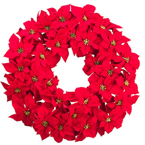 36'' Artificial Majestic Velvet Poinsettia Hanging Flower Wreath -Red by SilksAreForever